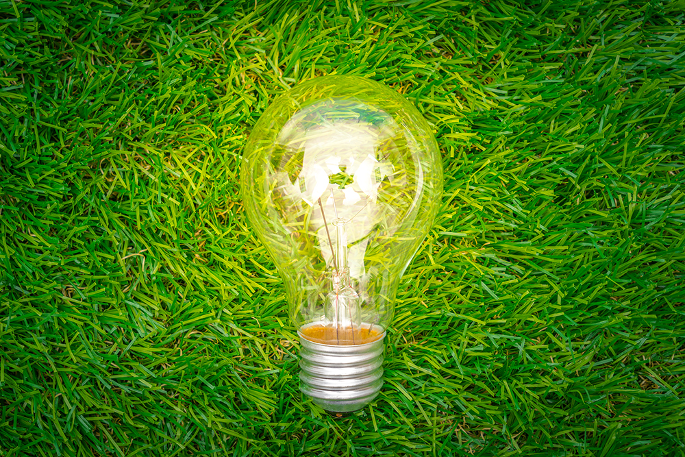 Eco concept – light bulb grow in the grass